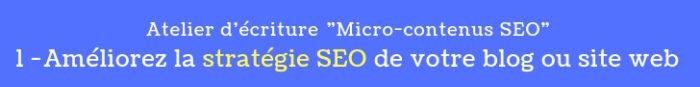 atelier micro contenus seo 1