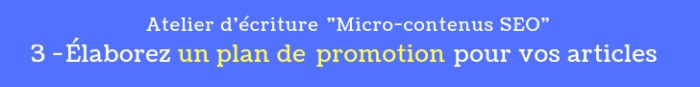 atelier micro contenus seo 3