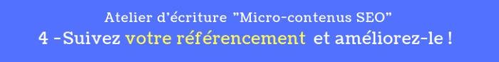 atelier micro contenus seo 4